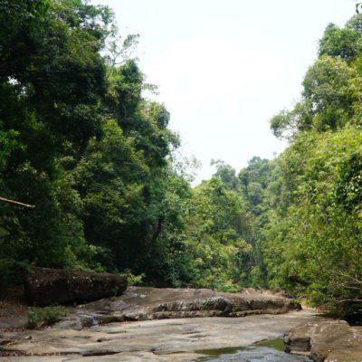 Flussaufwärts