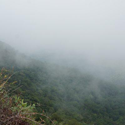 Blick ins Tal von der Hill Station