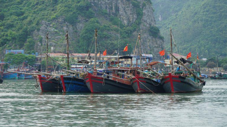 Reisetag: Ninh Bin via Hai Phong zur Insel Cat Ba