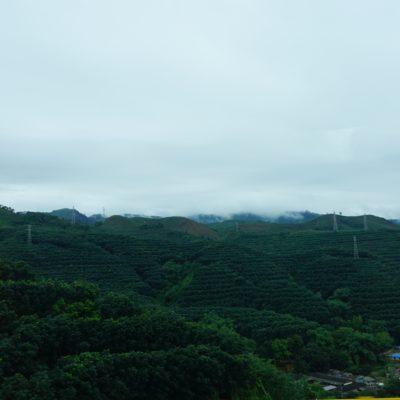 Landschaft in Richtung Kunming