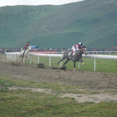 Das Rennen