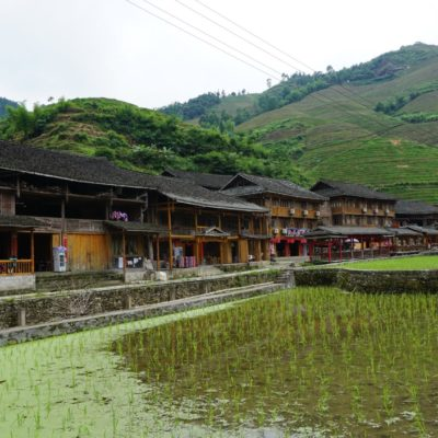Die Reisterrassen bei Dazhai