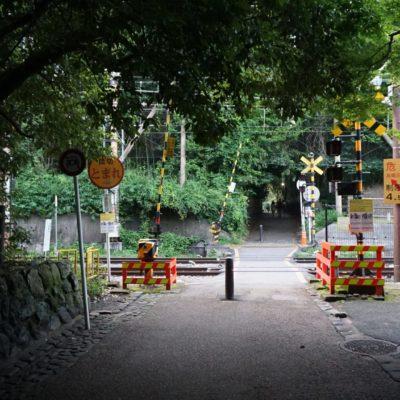 Bahnübergang am Bambuswald