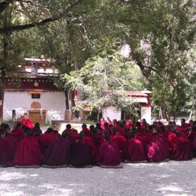 Die Mönche beim Gebet. Murmel, Muschel, Murmel. Schön, dass wir das erleben durften.