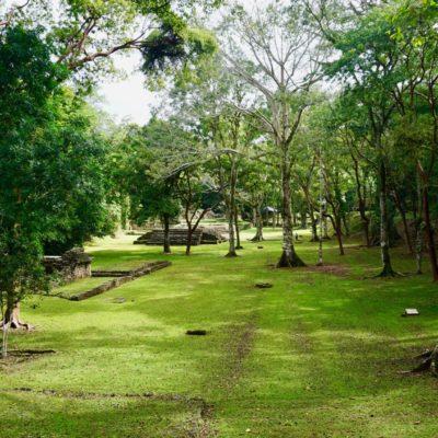 Die Ruinen von Yaxchilán