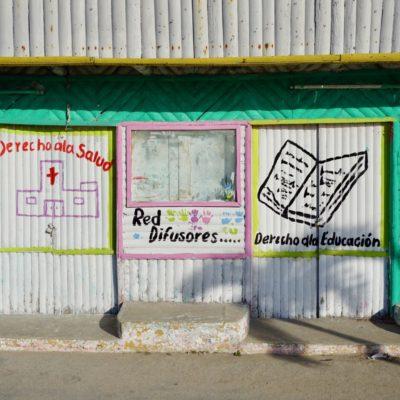 Impressionen aus Rio Lagartos