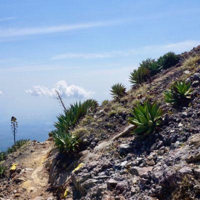 Einfacher Weg auf den Gipfel