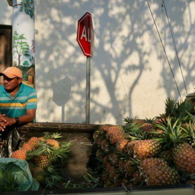 Der Ananas-Mann unseres Vertrauens