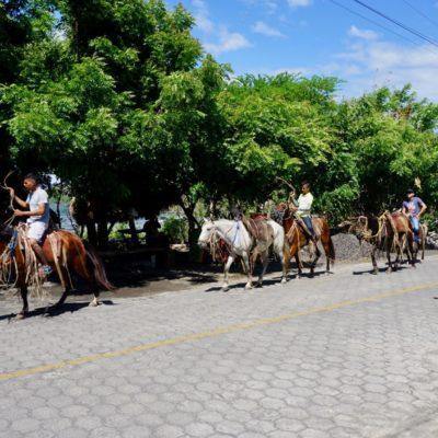 Verkehrsmittel sowie Beförderungsmittel für Touristen