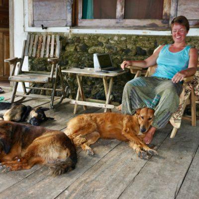 """Unsere tägliche Arbeit """" Hunde streicheln """" Wir hatten alle Hände voll zu tun"""