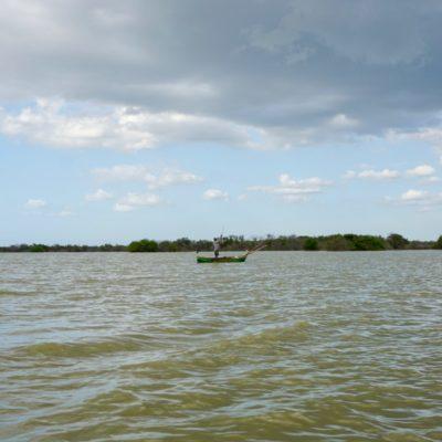 Fischer in der Lagune. Was gibt s hier ? Fisch, Garnelen und Austern.