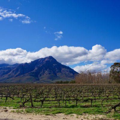 Tolle Landschaft hier in der Weingegend
