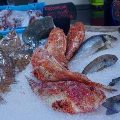 Bei unserem Fischhändler des Vertrauens