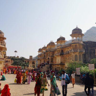 Jaipur Affentempel